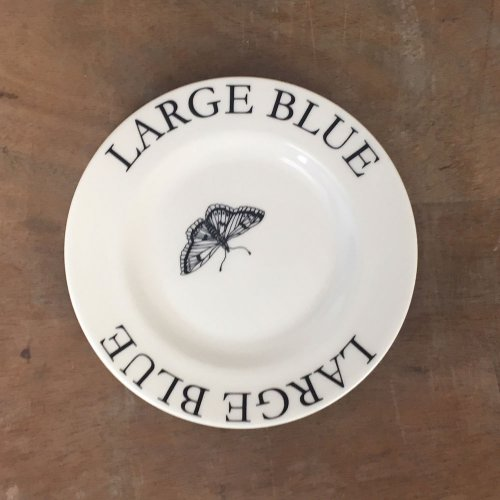 "WAREHOUSE SALE! MODERN BOTANICALS 5"" LARGE BLUE PLATE"