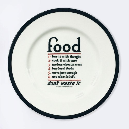 FOOD - BONE CHINA DINNER PLATE