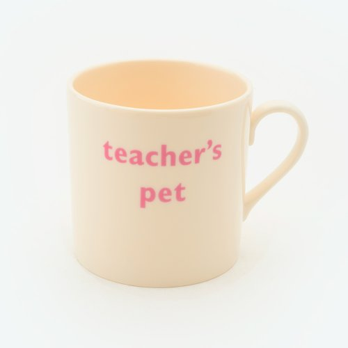 TEACHER'S PET CHILD'S MUG