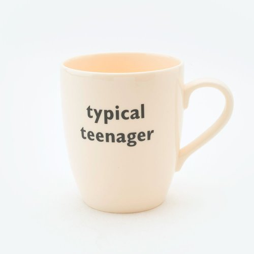 TYPICAL TEENAGER MUG
