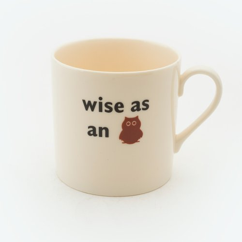 WISE AS AN OWL CHILD'S MUG