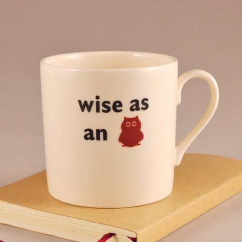 SALE! WISE AS AN OWL CHILD'S MUG